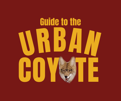 Guide to the Urban Coyote
